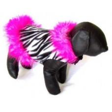Zebra Floozie Jacket