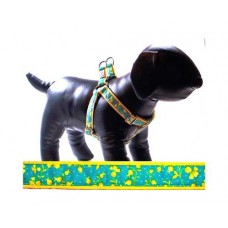 Blossom Dog Harness with Leash