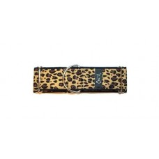 Night Leopard Martingale Collar