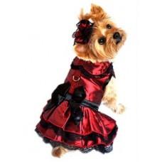 Iridescent Lace Dress