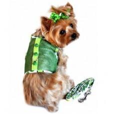 Green Ladybug Harness and Leash