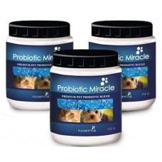 Nusentia Probiotic Miracle 44g