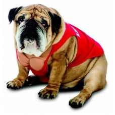 Lifeguard Dog Costume