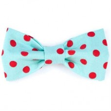 Bow Tie - Aqua/Red Dots