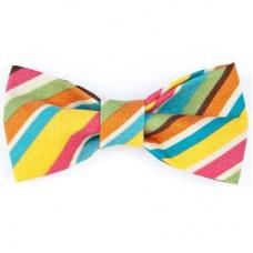 Bow Tie - Rainbow Diagonal Stripe