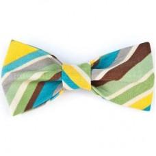 Bow Tie - Earthy Diagonal Stripe