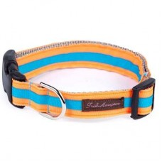 Neon Orange/Aqua Stripe Collection