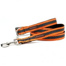 Orange/Black Mini Polka Collection