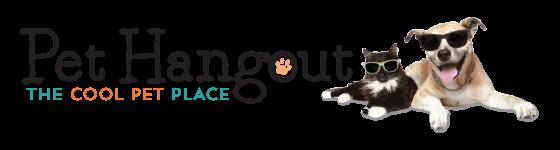 Pet Hangout