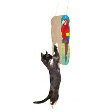 Macaw, Hanging