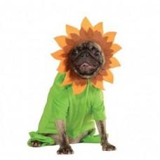 Rubie's Sunflower