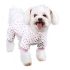 Dog Pajama - Owl