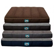 Sealy Cozy Comfy Bed