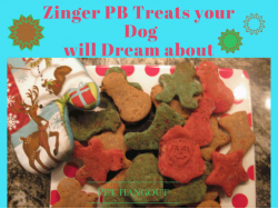 Zinger PB Treats that your Dog will Dream about