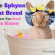 The Sphynx Cat Breed What You Need to Know