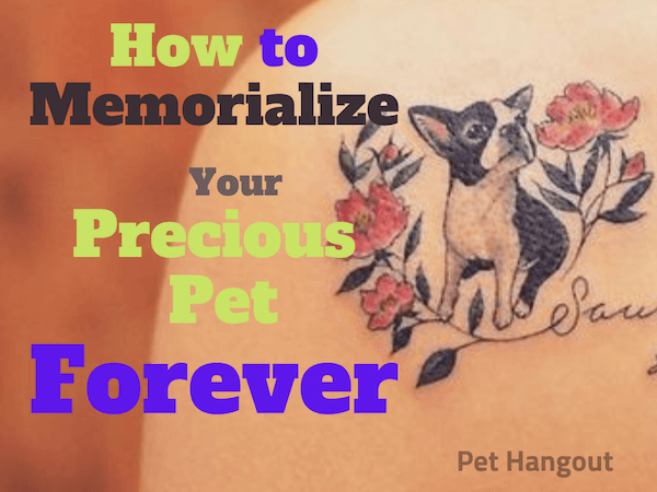 How to Memorialize Your Precious Pet Forever