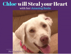 Chloe will Steal your Heart with her Amazing Smile