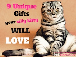 9 Unique Gifts Your Silly Kitty Will Love