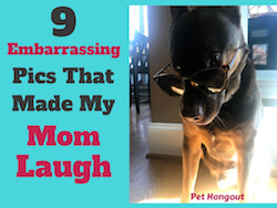 9 Embarrassing Pics That Made My Mom Laugh BIG