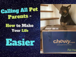 Calling All Pet Parents - How To Make Your Life Easier