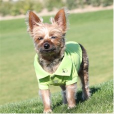 solid polo dog shirt