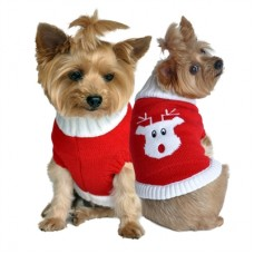 Rudolph Doggie Sweater