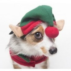 Holiday Elf Hat