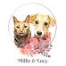 Millie & Lucy pet portrait