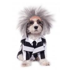 BeetleJuice Dog Costume