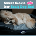 Sealy Dog Beds - Cooling