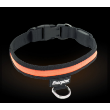 Orange Lit Dog Collar