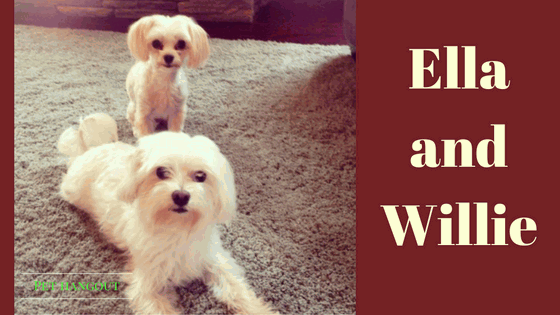 Ella and Willie