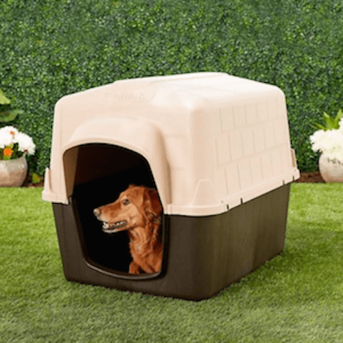 dog clubhouse petbarn