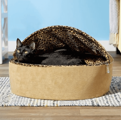 Heated cat bed.