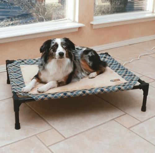 Heated raised pet bed.