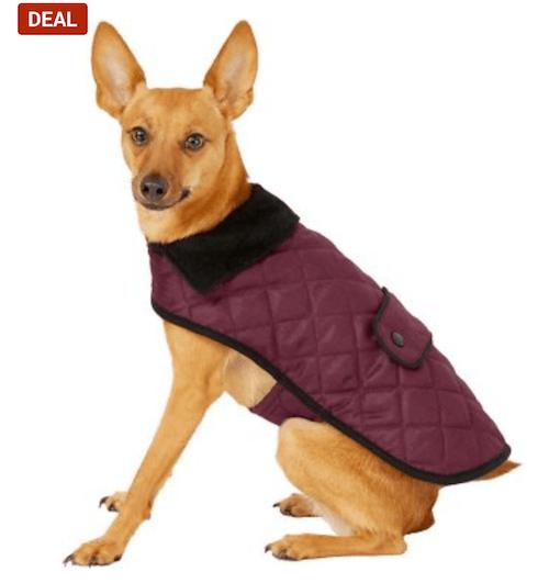 Maroon dog and cat jacket.