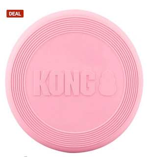 Kong frisbee for puppies.