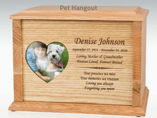 Buy a urn for your pet's ashes.