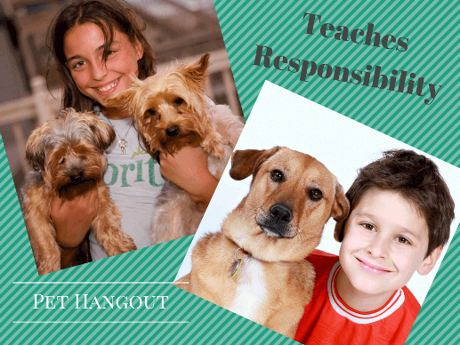Youth with dogs teaches responsibility