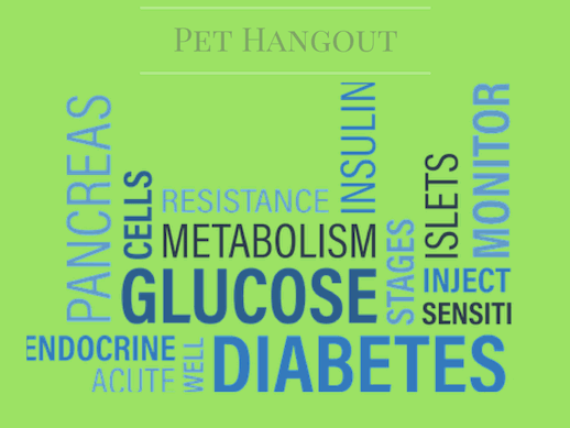 Dogs with diabetes can develop pancreatitis
