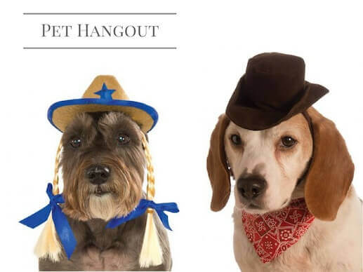 Cute cowgirl and cowboy dog costumes