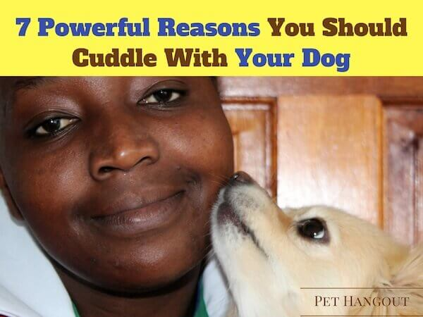 7 Powerful Reasons to Cuddle with Your Dog