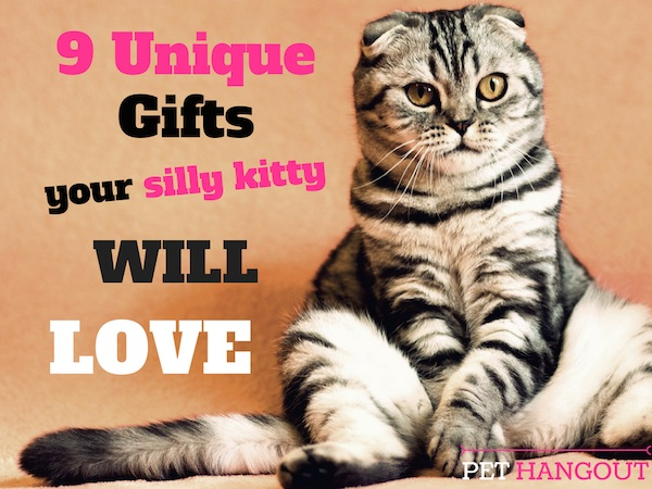 9 Unqiue Gifts Your Silly Kitty Will Love