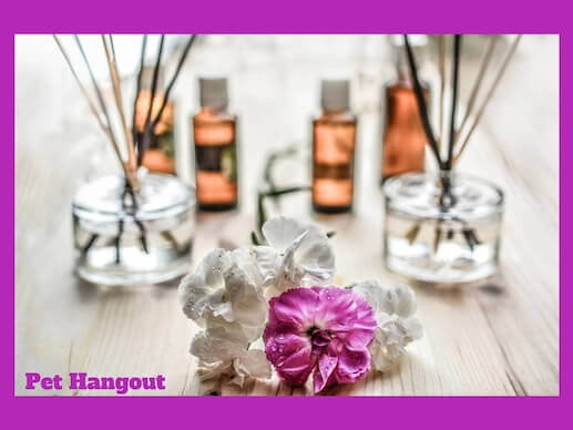 Try aromatherapy to freshen your home.
