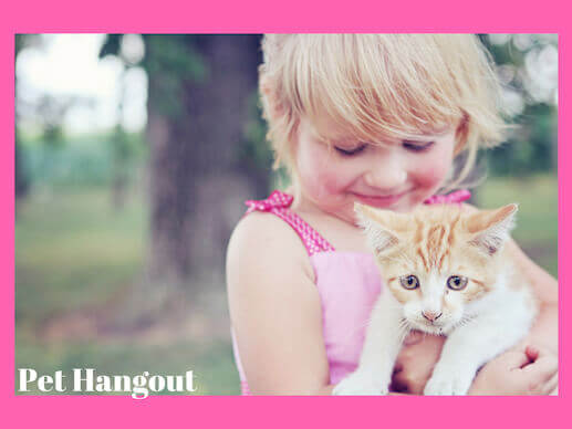 Toddler holding a scared kitten.