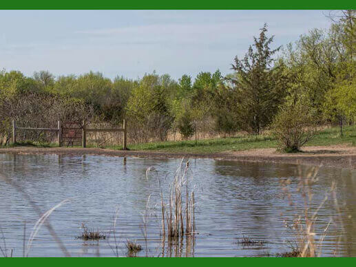 Lake and woods at Elm Creek Reserve Dog Park