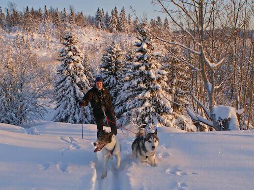 Skijoring at Elm Creek Reserve Dog Park