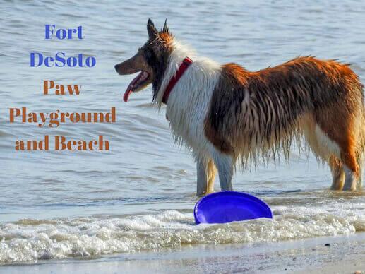 Fort DeSoto Paw Playground and Beach