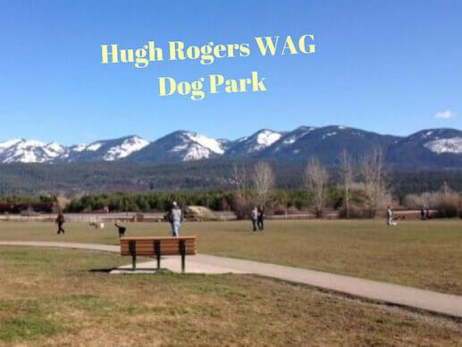 Hugh Roger WAG Dog Park