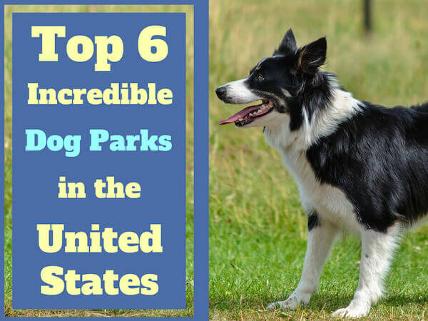 Top 6 Incredible Dog Parks in the United States.